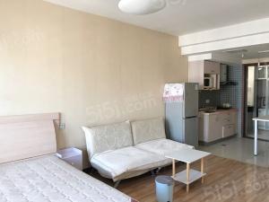 鼓楼江东 辰龙广场 单身公寓 拎包入住 看房方便